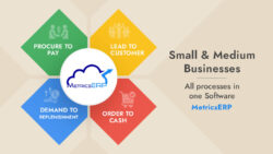 MetricsERP for Small and Medium Businesses – All processes in one Software